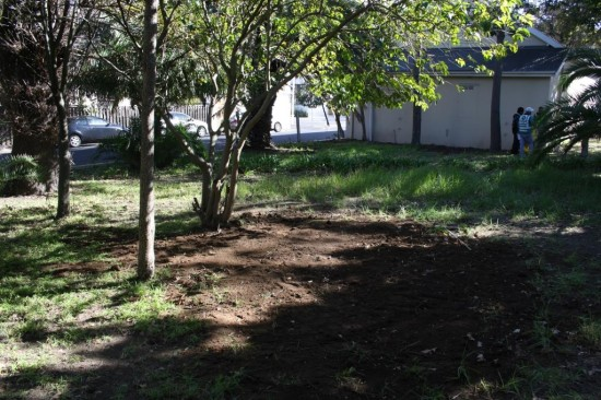 Rondebosch Station clean-upIMG_1525