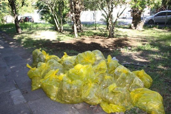 Rondebosch Station clean-upIMG_1527