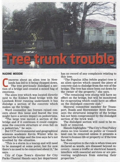 Tree trunk trouble (People's Post, 16 July 2013)