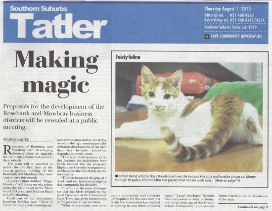 Making magic (Tatler, 1 August 2013)
